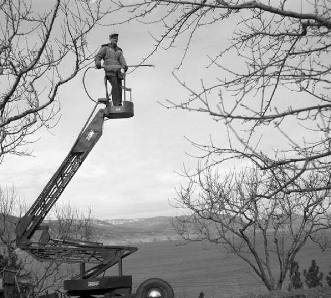 Xe nâng người boom lift ứng dụng ngày xưa